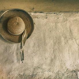 Zonnehoed aan oude muur van Ellen Driesse