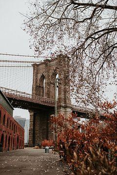 Brooklyn Bridge im Herbst | Farbenfrohe Reisefotografie von Trix Leeflang