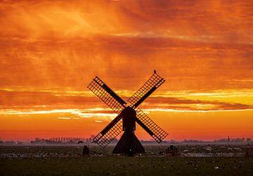 rode lucht van Niels  de Vries
