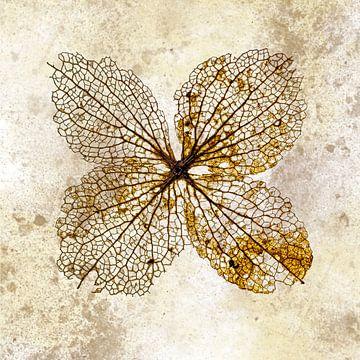 Hortensienblatt von Klaartje Majoor