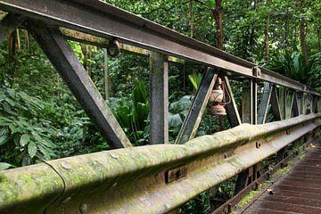 Alte Brücke im Busch. von Mark Nieuwkoop