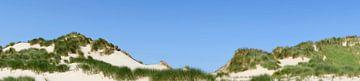 Sanddünen Panorama an einem Sommertag von Sjoerd van der Wal