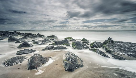 Strand Noordzee Texel