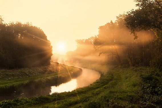 Lichtstroom van Dennis Timmer