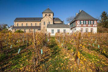 Basilika Sankt Ägidius in Mittelheim - Älteste Kirche im Rheingau von Christian Müringer