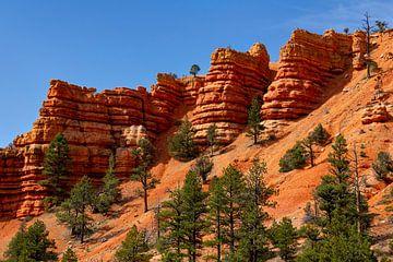 Red Canyon, Utah, USA von Adelheid Smitt