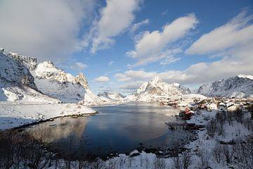 Panoramisch fjord van Babs Boelens