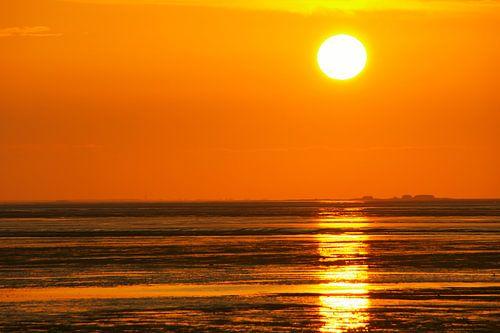 Hallig im Sonnenuntergang von