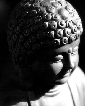 Little Buddha van Brian Raggatt