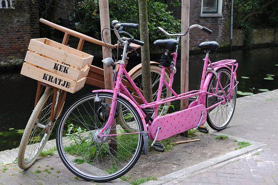 Roze tandem en houten fiets aan gracht van Delft