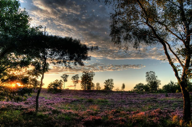 Landgoed Den Treek III Amersfoort van Watze D. de Haan