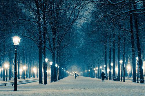 Lange Voorhout in de winter van Raoul Suermondt