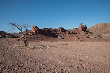 rotsen en zand in de woestijn van israel von Compuinfoto .