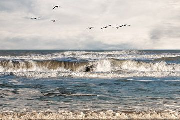 Die Nordsee an einem Wintertag bei Hoek van Holland von Henk Hulshof