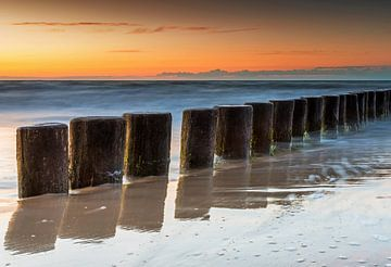 Buhnen am Meer im Sonnenuntergang von Frank Herrmann