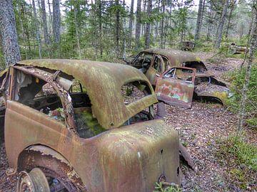 Autowrak in Zweeds bos IV van Ron de Regt