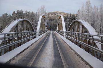 Bijzondere spoor-weg-brug in Zweden von Carin van der Aa