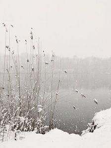 Sneeuwval op het meer van Lena Weisbek