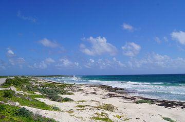 Golven op de kust van Cozumel van Jadzia Klimkiewicz