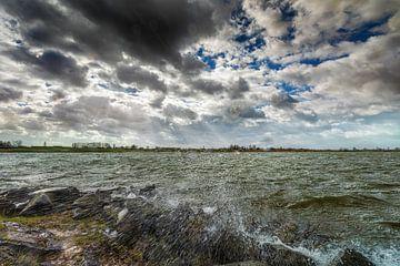 Storm langs de rivier van Jacques Jullens