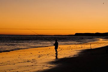 Eenzame visser van Nynke Nicolai