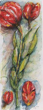 Tulpen in Holland. von Ineke de Rijk