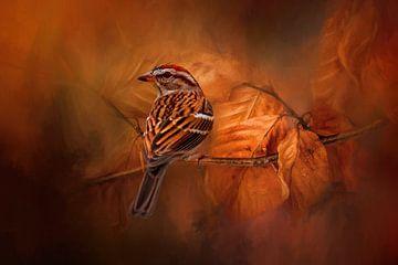 Musgors Vogel zit op een Herfst Tak in Herfstkleuren van Diana van Tankeren
