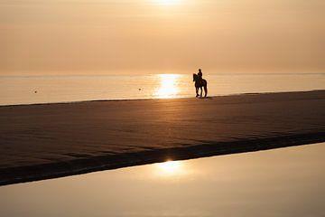 Paard en rijder aan strand in avondgloed van Tot Kijk Fotografie: natuur aan de muur