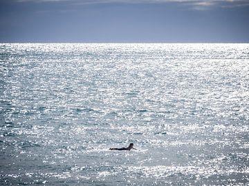 Nieuw-Zeeland - Hahei - Liggend op de oceaan van Rik Pijnenburg