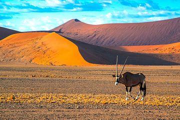 Gemsbok voor de rode duinen in de Sossusvlei, Namibië van Rietje Bulthuis