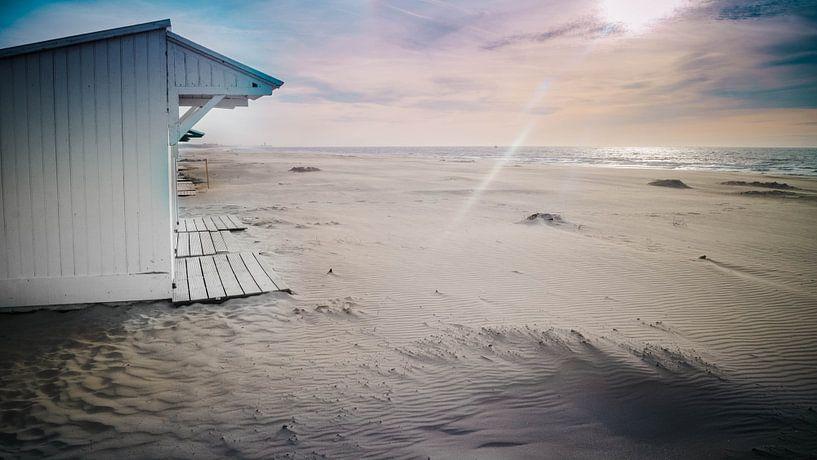 Summertime van Ruben Van der Sanden