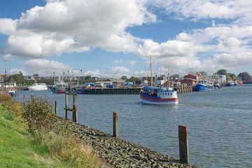 im Hafen von Büsum in Nordfriesland von Peter Eckert
