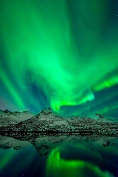 Noorderlicht boven de Lofoten in Noord Noorwegen van Sjoerd van der Wal