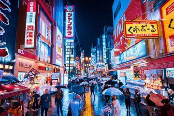 Osaka in de regen van Tom Rijpert