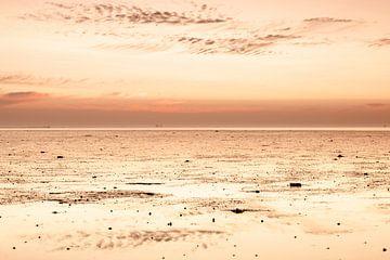 Zonsondergang wad bij Lauwersoog van Dana Schoenmaker
