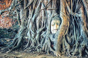 Wat Maha That sur Manjik Pictures