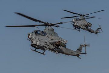 Landing van twee Bell AH-1Z Viper aanvalshelikopters van de US Marines van Jaap van den Berg