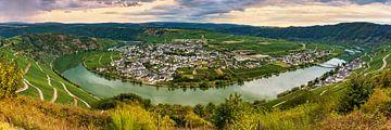 Moezelbocht bij Piesport, Duitsland van Adelheid Smitt
