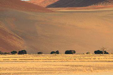 Woestijn landschap met duinen in Namibië van Bobsphotography