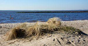 Strand Ketelmeer van