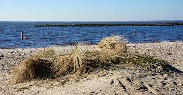 Strand Ketelmeer von