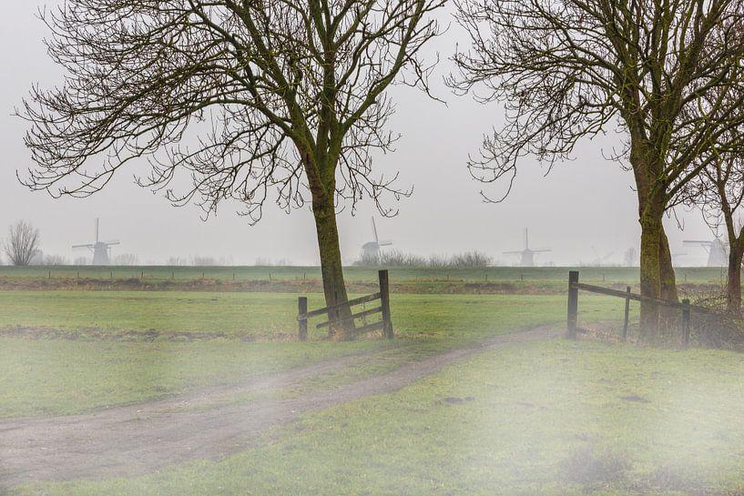 Kinderdijk over de dijk met mist in het weiland van Brian Morgan