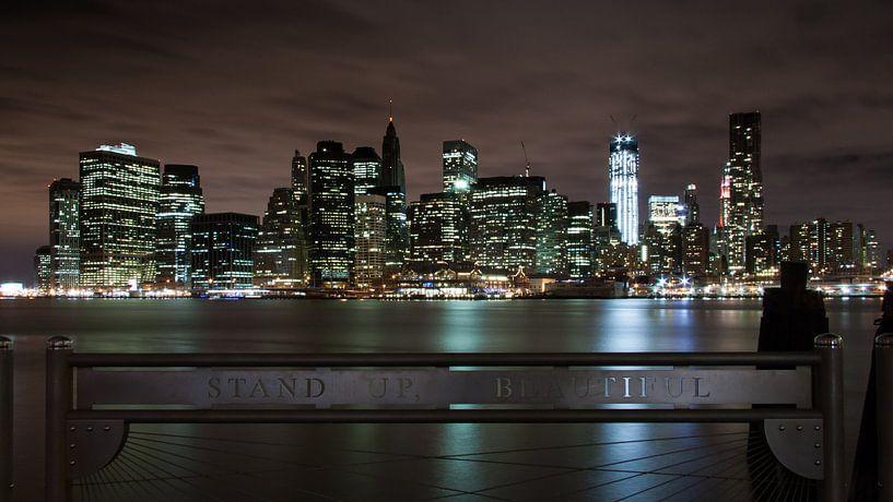 New York by Night van Chris van Kan
