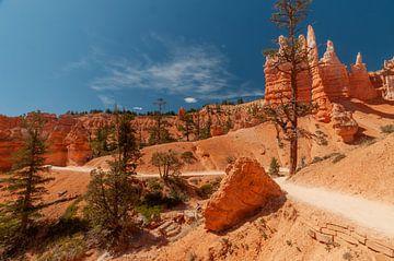 brice Canyon National Park van Bart Poelaert