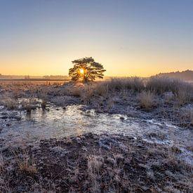 Le petit lac Sunrise sur Teuni's Dreams of Reality
