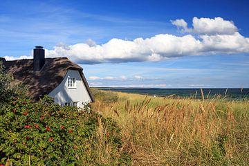 Das Haus am Meer von Frank Herrmann