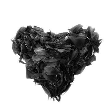 Schwarzes Herz von Claudia Moeckel