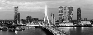 Rotterdam Erasmusbrug black and white