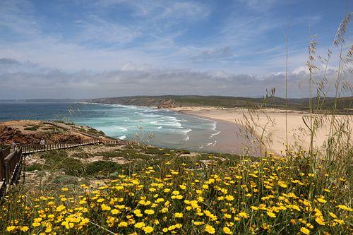 Zeezicht portugal over mooi geel bloemen bed van
