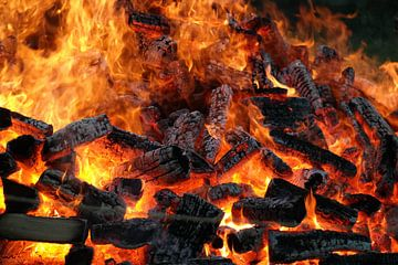 Vuur van
